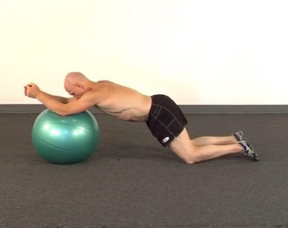 Awesome abs paul chek pdf